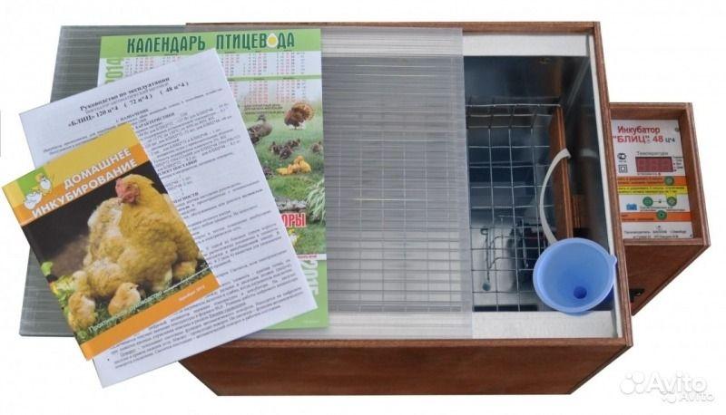 Инкубатор на 48 яиц блиц 48 цифровой. Калужская область, Киров
