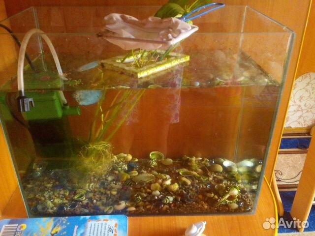 В наличии аквариумы от 10 до 25 литров