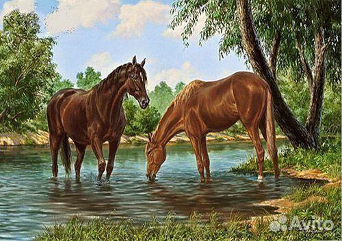 Картина c лошадьми Кони на
