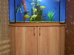 Продаю аквариум 200л+ тумба