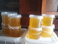 Продам мёд эспорцэт