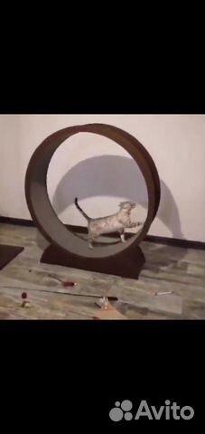 Беговое колесо для кошек 20-14