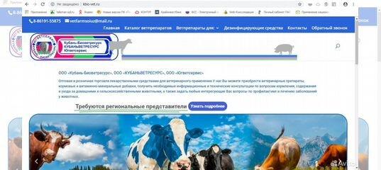 Услуги - Создание и продвижение сайтов в Краснодарском крае предложение и поиск  услуг на Avito — Объявления на сайте Авито 3b7830d440d