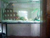 Продам аквариум 500л. с подставкой,длина 1400мм,вы